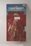 Mattel MOTU Masters of the Universe teela MOC